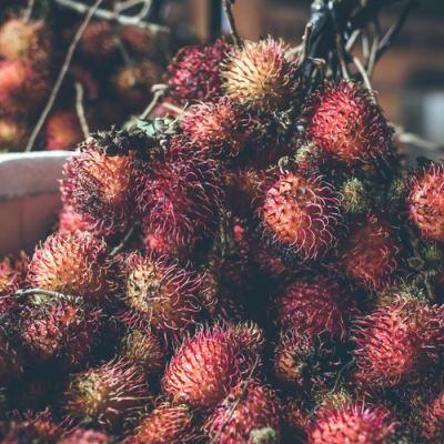 Hamilelikte Rambutan Meyvesi Yemek; Faydaları ve Zararları